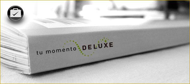 DLX imagen corporativa
