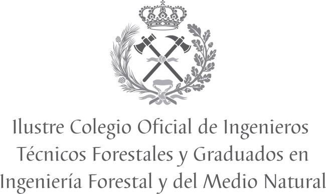 COITF logo centrado