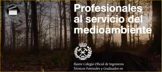 COITF video