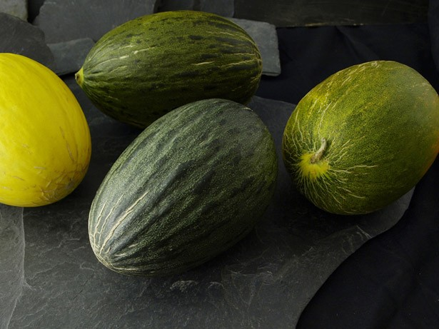 melones-1